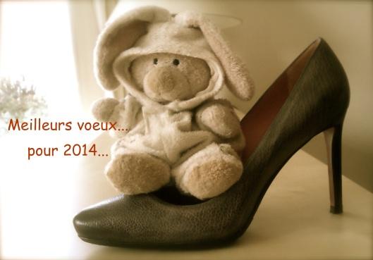 bonne année 20141